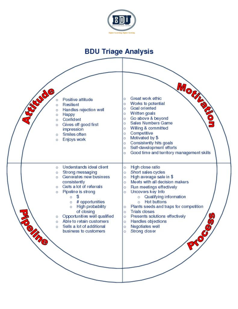 thumbnail of BDU –  Sales Triage Analysis Visual PDF